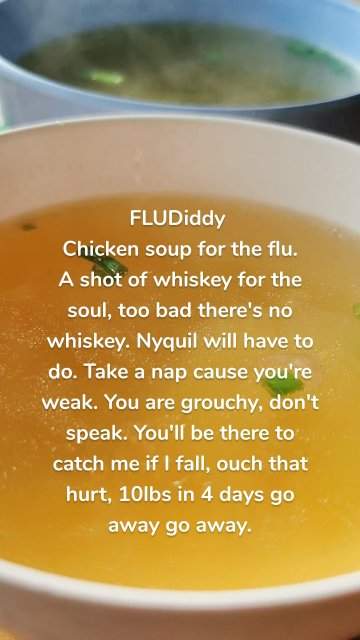 FLUDiddy Chicken soup for the flu. A shot of whiskey for the soul, too bad there's no whiskey. Nyquil will have to do. Take a nap cause you're weak. You are grouchy, don't speak. You'll be there to catch me if I fall, ouch that hurt, 10lbs in 4 days go away go away.